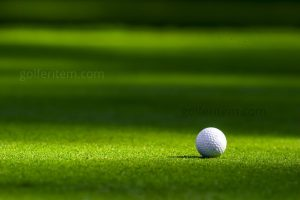 best golf ball for hot humid weather.